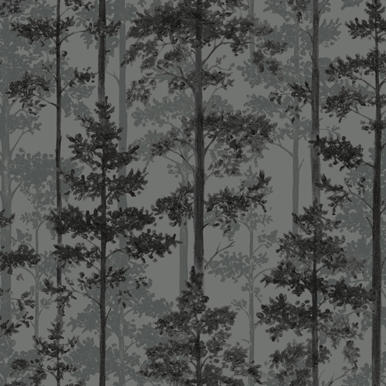 Picture of Pine - 8826